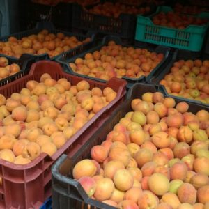 Sárgabarack gyümölcs