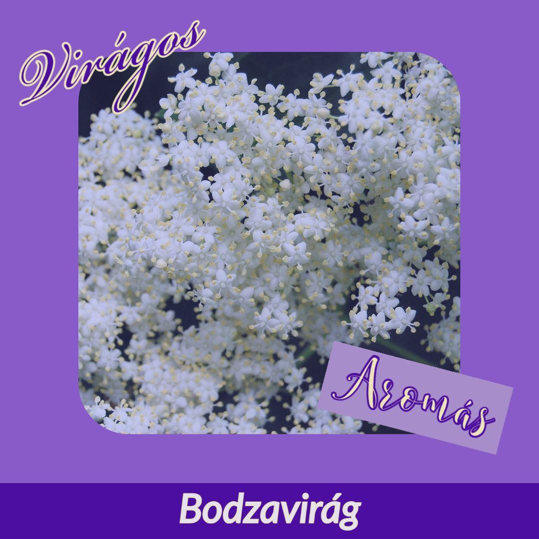 Bodzavirág R1 ginhez