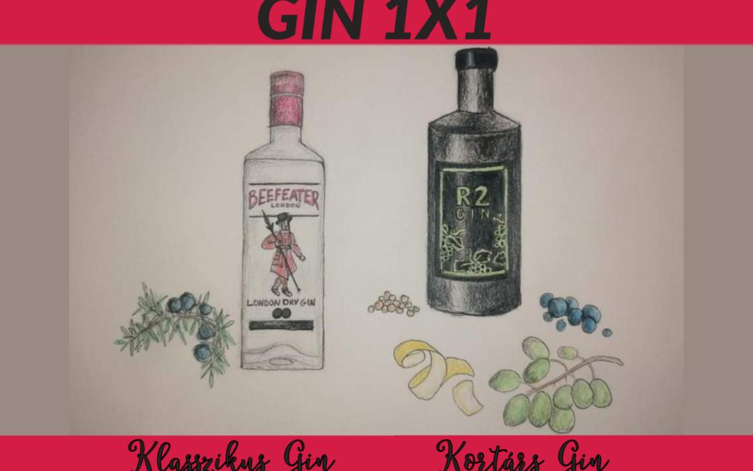 GIN 1X1: Klasszikus kontra Kortárs Gin