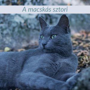 Old Tom Gin, a macskás sztori
