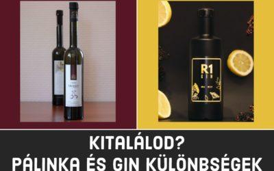 Kitalálod? Pálinka és Gin – Mi a különbség?