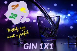 GIN 1X1 Ginkóstolás: Kóstold a gint profi módon