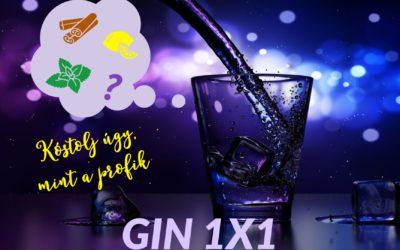 Ginkóstolás – Kóstold a gint profi módon!