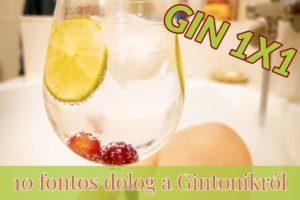 GIN 1X1 10 fontos dolog a Gintonikról