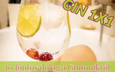 10 fontos dolog a Gintonikról