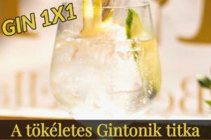 GIN 1X1 A tökéletes Gintonik titka